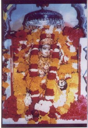 Mata baglamukhi Photo Image taken from pitambara shakti peeth