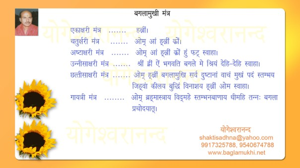 Baglamukhi Mantra in Hindi