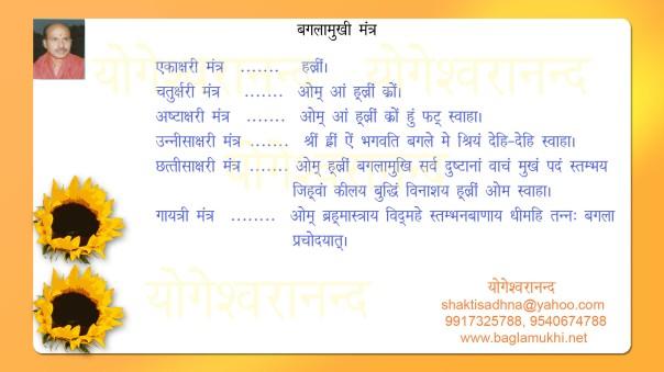 Baglamukhi Mantra in Hindi